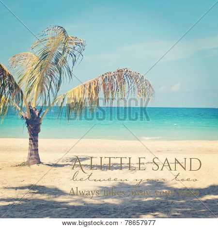 Beautiful Instagram Of Lone Palm Tree On A Tropical Beach  With Quote