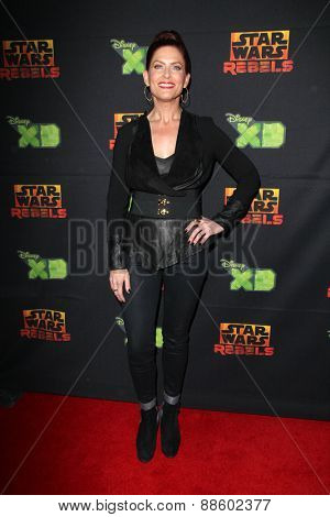 LOS ANGELES - FEB 18:  Vanessa Marshall at the Global Premiere of