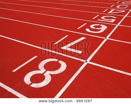 Starting Grid of Race Track in Stadium