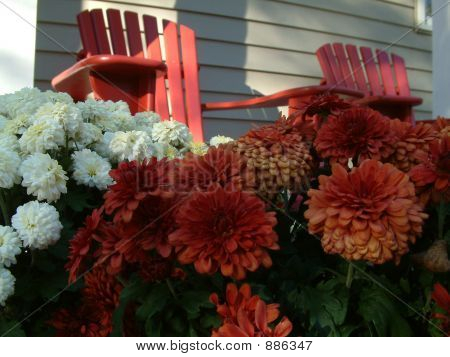 cottage chairs and flowers