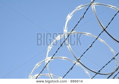 razor wire on chain link security fence poster