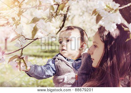 Teenie Girl Holding Baby In Blooming Apple Tree Background