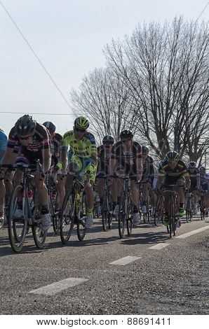 Famous Tirreno Adriatico Bycicle Race