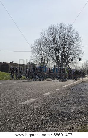 Group At The Tirreno Adriatico Bycicle Race