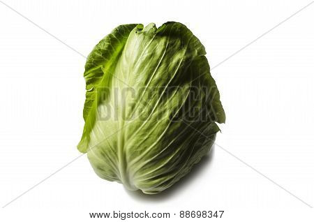 Facilities early cabbage on a white background