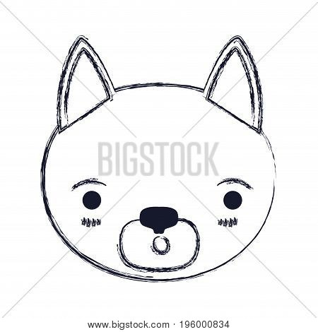 blurred silhouette cute face of cat surprised expression vector illustration