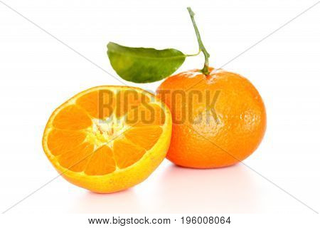 two orange clementines on a white background