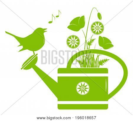 vector corn poppies and cornflowers in watering can and singing bird isolated on white background