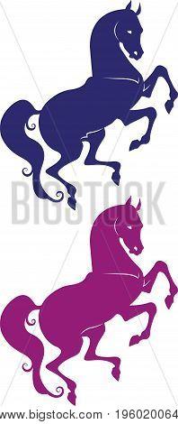 Elegant silhouette of horse - stallion and mare vector for design