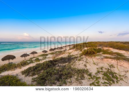 View Of The Morning Beach Of The Island Cayo Largo, Cuba. Copy Space For Text.