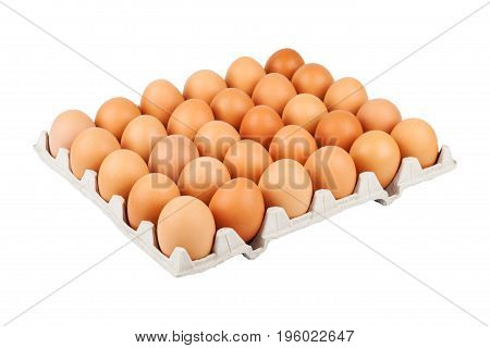 Large egg tray isolated on white background close-up