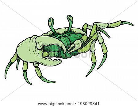 Hand drawn line art colorful crab - vector illustration