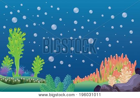 Underwater landscape - background vector illustration cartoon background for design