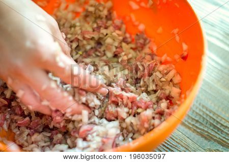 Women's Hands Mold Something From Minced Meat. Horizontal Frame