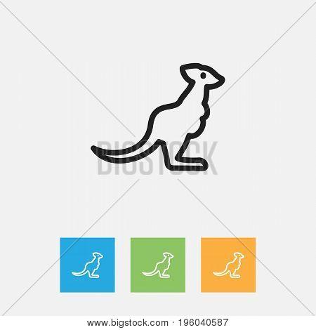 Vector Illustration Of Zoology Symbol On Kangaroo Outline