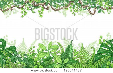 Hand drawn branches and leaves of tropical plants. Vivid line horizontal floral pattern. Green two-sided seamless border. Vector sketch.
