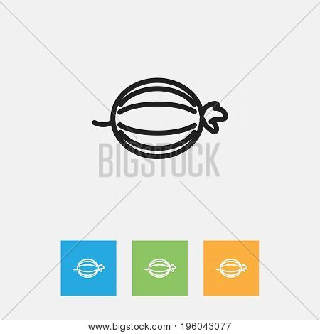 Vector Illustration Of Vegetable Symbol On Juniper Outline