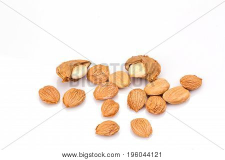 apricot kernel isolated on white background. Vegetarian food