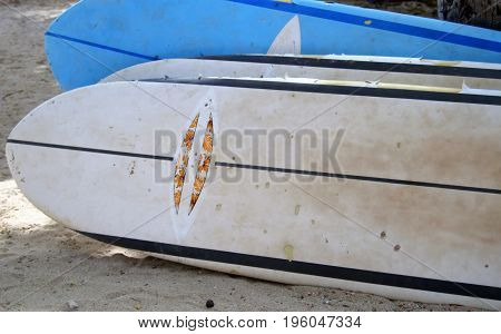 horizontal image of surf boards in beach sand