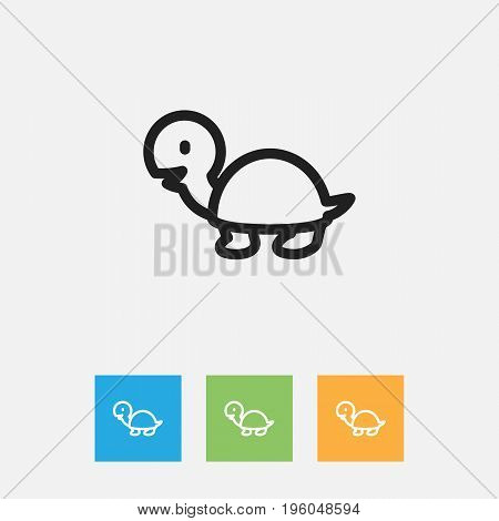 Vector Illustration Of Zoo Symbol On Turtle Outline