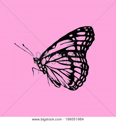 Butterfly isolated on transparent background. Black silhouettes of butterflies. Graphic icons of butterflies. Vector illustration
