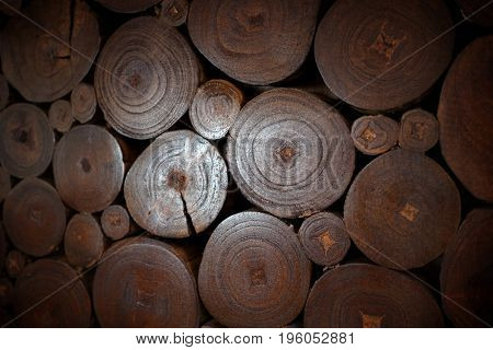 Background of wooden slices from tree trunks and branches