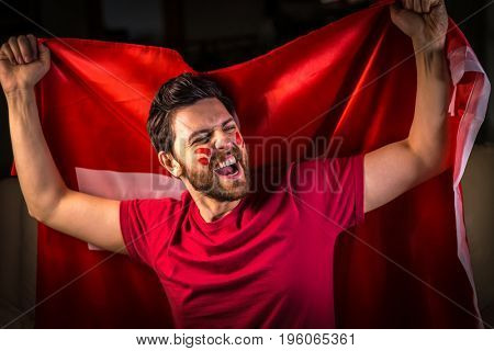 Swiss fan holding the national flag