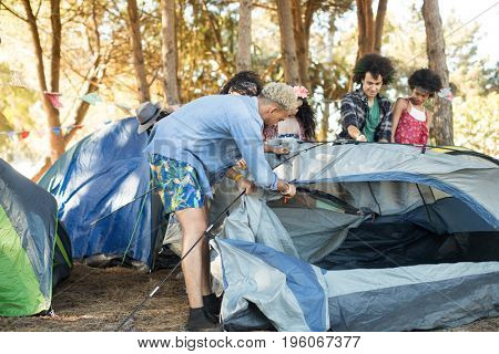 Young friends setting up tents together at forest