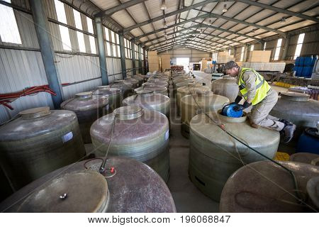 Worker removing oil from tank in oil factory