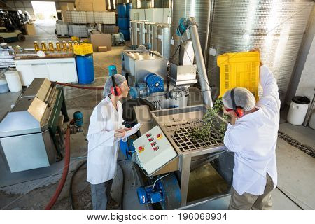 Workers working together near production line in oil factory