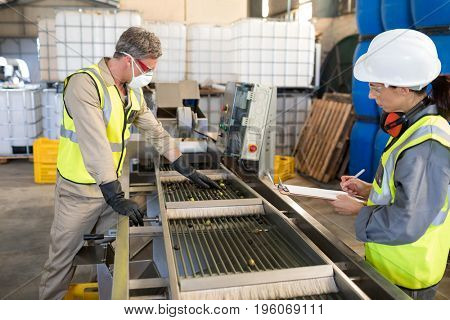 Technicians examining olives on conveyor belt in oil factory