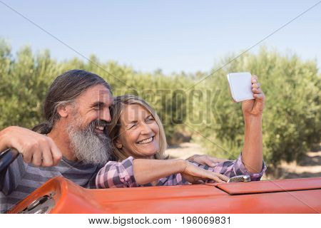 Happy couple taking selfie from mobile in olive farm