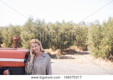 Woman talking on mobile phone in olive farm on a sunny day