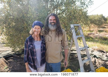 Portrait of happy couple standing together in olive farm on a sunny day