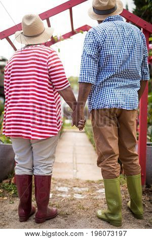Full length of senior couple holding hands while standing in yard