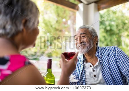 Happy couple having wine while sitting in yard