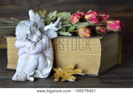 Angel roses and old book on wooden background