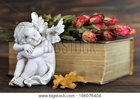 Angel dry roses and old book on wooden background