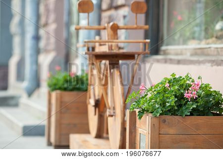 Flowerbed on a background of a wooden Bicycle. Urban jewelry.