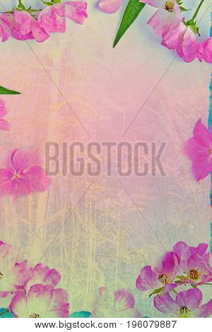 Artistic natural background with pink subtle flowers