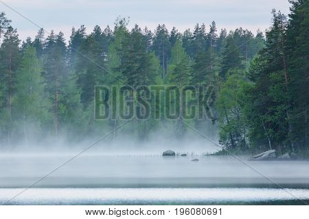 Foggy calm lake and forest at summer night Finland