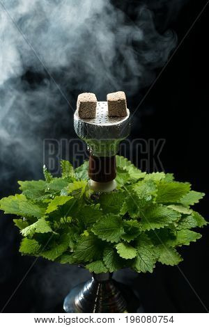 Mint smoking hookah with leafs on black background