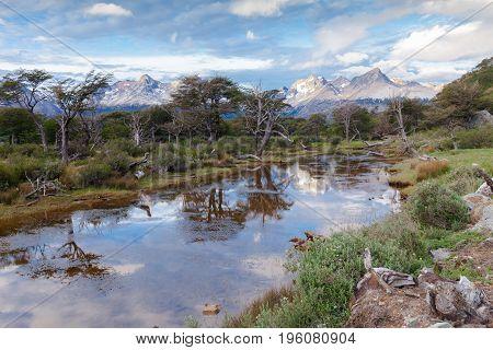Tierra del Fuego National Park Ushuaia Patagonia Argentina