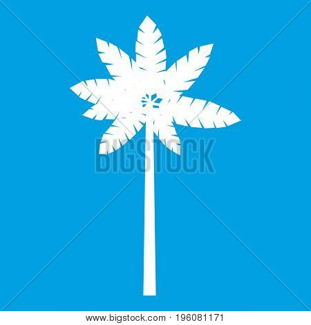 Palm woody plant icon white isolated on blue background vector illustration