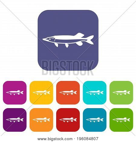 Saury icons set vector illustration in flat style in colors red, blue, green, and other