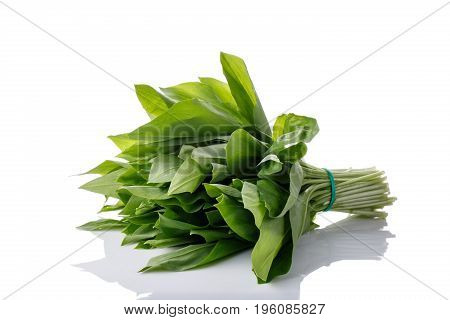 Bunch of ramson leaves. Wild garlic isolated on white.
