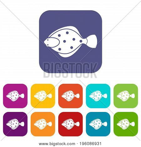 Flounder fish icons set vector illustration in flat style in colors red, blue, green, and other