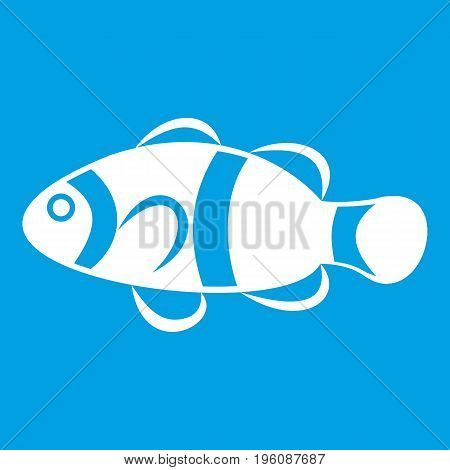 Cute clown fish icon white isolated on blue background vector illustration