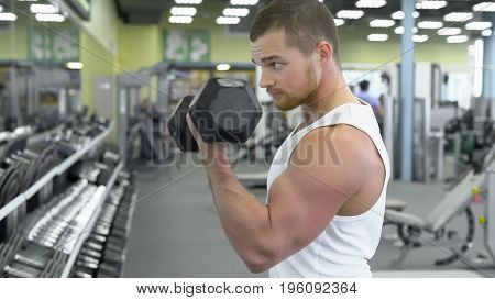 Portrait Of Strong Athletic Man At The Gym Training. Bodybuilder Does An Exercise On The Biceps With