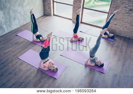 Upside Down Seal Pose. Topview Of Five Pretty Young Slim Ladies, Stretching By Doing Shoulderstand E